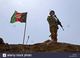 afghan hound in apartment afghan flag stock photos u0026 afghan flag stock images alamy