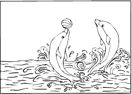 dolphins playing with ball coloring page