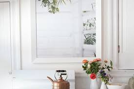 Plants To Keep In Bathroom 5 Overlooked Plants That Can Survive The Dark Almost Apartment