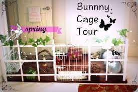 Rabbit Home Decor Bunny Home Decor Amazon Com Design Toscano Carotene Rabbit