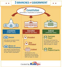 What Is A Government Cabinet Best 25 Teaching Government Ideas On Pinterest Local Map State