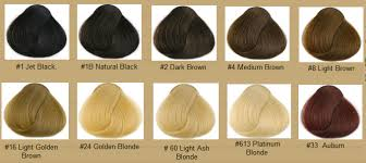 light golden brown hair color chart hair color chart qlassy hair extensions