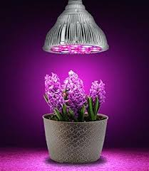 plant grow lights lowes plant gro lights fluorescent plant grow lights lowes hsvredshorts club