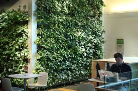 why living walls livewall green wall system