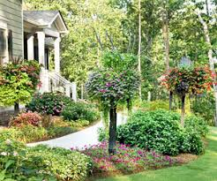 Plants For Front Yard Landscaping - 5 essential tips for designing a front yard garden