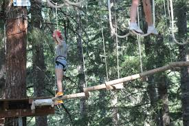 overcome challenging obstacles in the aerial adventure course at