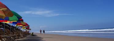 689 Best Beach Crafts U0026 by