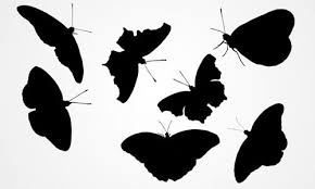 25 high quality vector butterfly for free naldz graphics