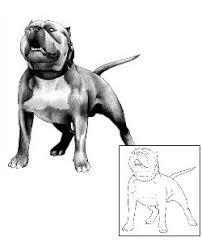 tattoo johnny pit bull tattoos