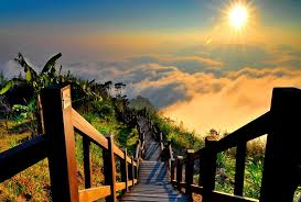 Beautiful Stairs by Sunsets Green Sunrise Morning Sky Greenery Sunny High Stairs Rays