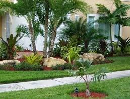 Florida Backyard Landscaping Ideas by 379 Best Florida Landscaping Images On Pinterest Landscaping