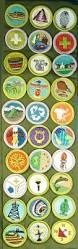ranks and badges a troop 11 guide to advancement bsa troop 11