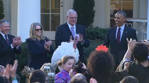 obama thanksgiving turkey obama dishes out puns at final turkey pardon cnn video