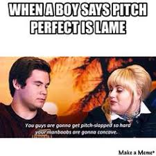 Pitch Perfect Meme - fan meme hilarious pinterest pitch perfect meme and pitch
