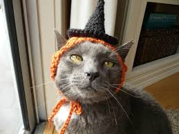 Pet Cat Halloween Costume Halloween Costume Cat Witch Hat Cat Holiday Hat Fall