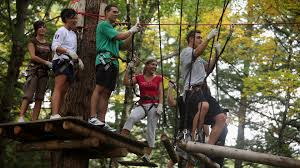 tree top adventure park lake george adventure park aerial