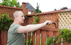 fabulous fence painting ideas to make the outdoors look prettier