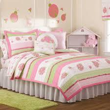 Indie Bedspreads Amazon Com Pem America Crazy Ladybug Quilt Set Twin Kitchen