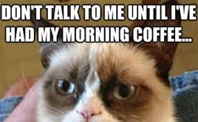 Cat Alien Meme - grumpy cat archives humor memes com