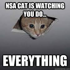 Ceiling Cat Meme - nsa cat is watching you do everything ceiling cat quickmeme