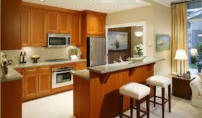 Houzz Galley Kitchen Designs 100 Kitchen Ideas Houzz Trendy Small Kitchen Ideas Diy On