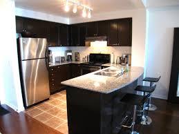 kitchen amazing modern kitchen for small condo small condo