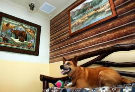 Modern Hotel Interior Modern Hotels For Dogs Impress With Luxurious Interior Design Ideas