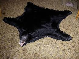 how to skin a black bear for a rug roselawnlutheran