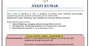 Finance Resume Samples Doc by Over 10000 Cv And Resume Samples With Free Download Marketing