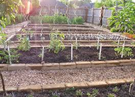 Deer Proof Fence For Vegetable Garden How To Keep Rabbits Out Of Garden Garden Fences To Keep Out All