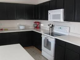 black and white appliance reno black kitchen cabinets with white appliances other reno ideas