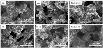 The Location Of The Water Table Is Subject To Change Sem Imagesof Fractured Surfaces Of The Porous Ti Metal Specimens