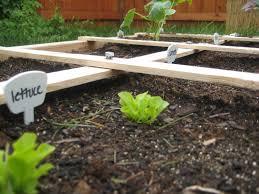 sfg planting finally twsst
