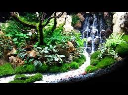 Aquascape Aquarium Designs Top 300 Best Aquascape Aquariums Youtube Fish Tanks