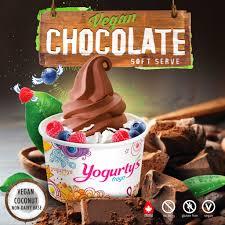 home yogurty u0027s froyo frozen yogurt