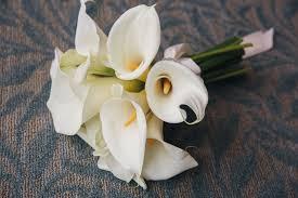 charleston wedding photography terri u0026 jim