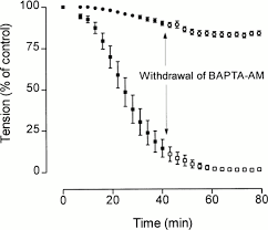 effects of bapta on force and ca2 transient during isometric