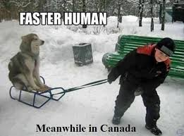 Meanwhile Meme - 259 best meanwhile in canada images on pinterest canada eh