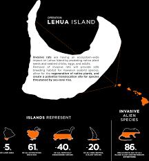 native plant project island conservation lehua island hawai u0027i restoration project
