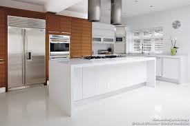 Zebra Wood Kitchen Cabinets Amazing Kitchen Furniture And Refrigerator With Kitchen Cabinets