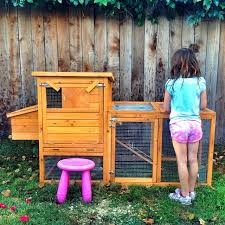 Good Backyard Pets All The Pets My Kid Begged For And Got Ranked Pretty Prudent