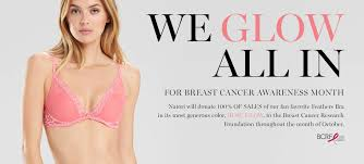 luxury lingerie bras and clothing natori
