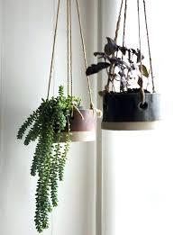 plant wall hangers indoor indoor wall plant holders hanging planters hanging metal planters