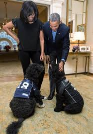 Barack And Michelle Obama U0027s by Obama Dog Meme Jared Leto Hugs On Barack Obama Angelina Jolie