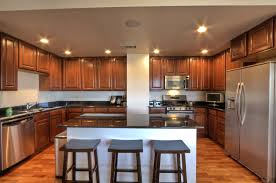 Kitchen Drop Ceiling Lighting Interior Design Led Kitchen Ceiling Lights Best Of What To Do