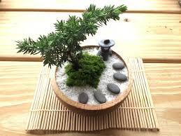 japanese zen potted zen shan shan water pine tree pot