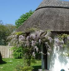 Holiday Cottages Ireland by 20 Best Cottages Ireland Thatched Seaside Cottages Images On