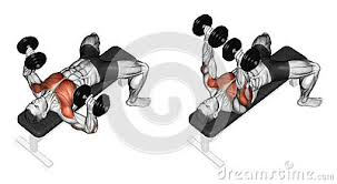 Chest Workout Dumbbells No Bench Chest Workouts Incline Bench Press Flat Bench Press Decline