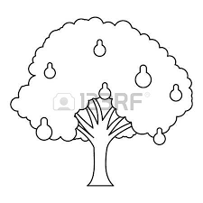 thin tree trunk stock photos royalty free business images