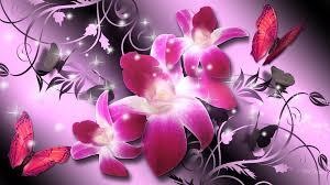wallpaper luxury pink flower orchids luxury flowers firefox persona stars orchid shine